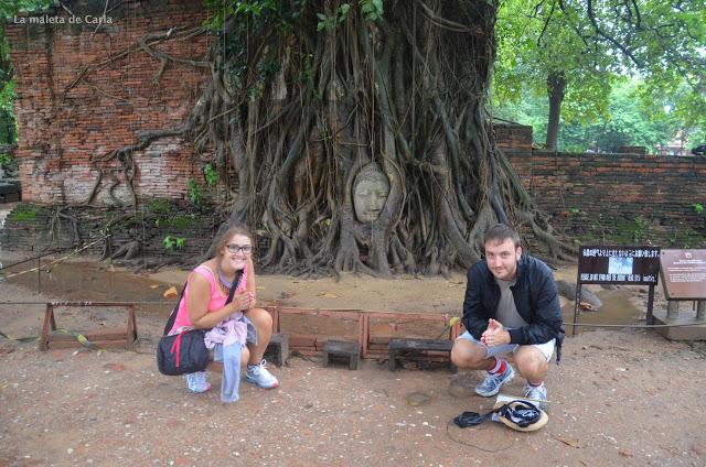 un día en Ayutthaya: la cabeza de buda