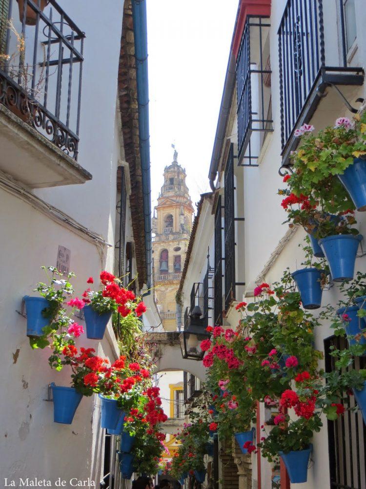 Una semana en Andalucía: callejuela estrecha adornada con flores