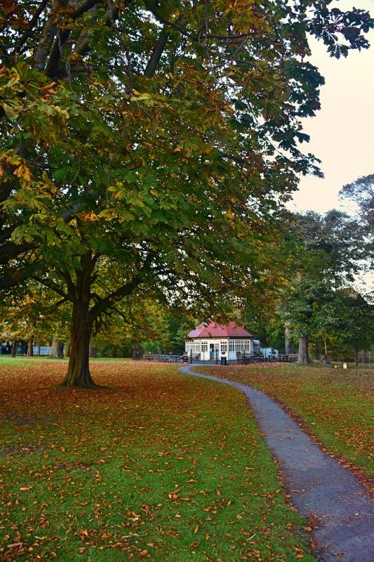 Qué hacer en Dublín: otoño en Phoenix Park