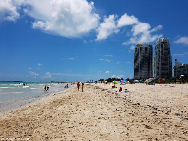Qué hacer en Miami: Miami Beach