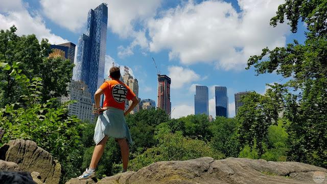 Qué hacer en Central Park y alrededores