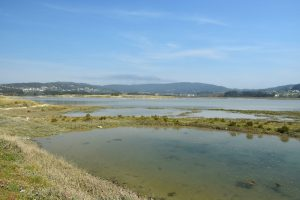 Hacer surf en Galicia - laguna de Baldaio