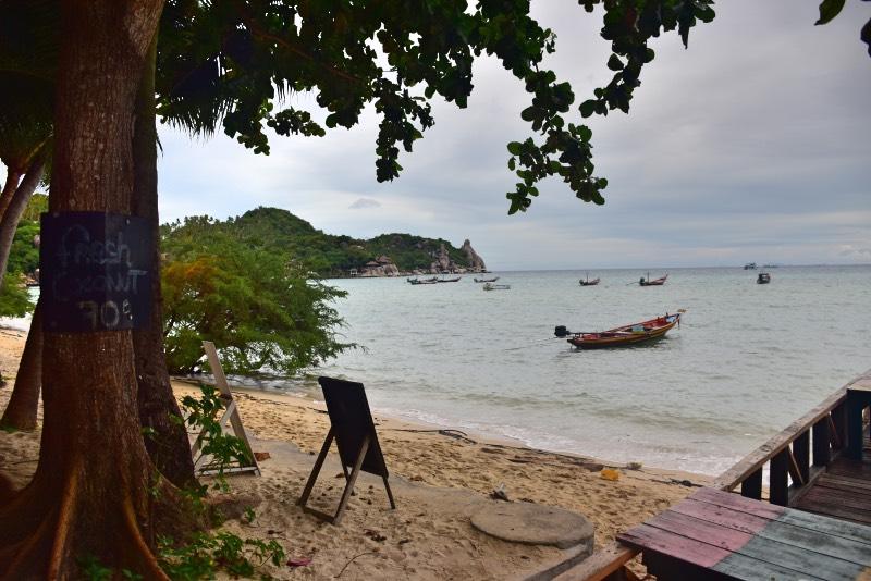 Playa del JP Resort