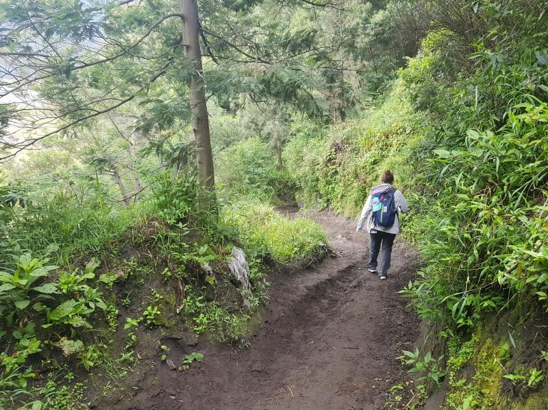 El camino para llegar al Bromo