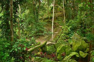 Cosas que hacer en Bali