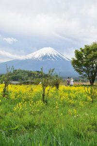 Qué hacer en Kawaguchiko en un día: monte Fuji