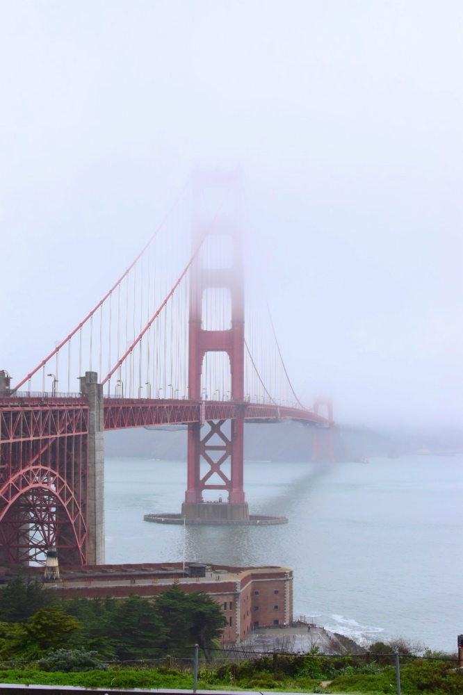 Golden gate con niebla