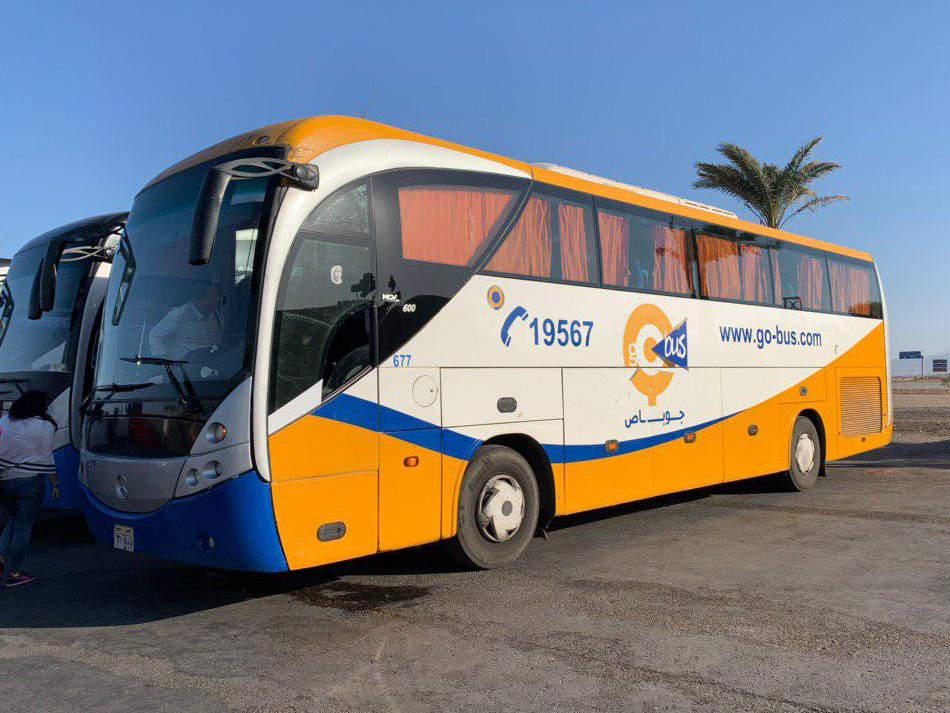 go-bus autobús Egipto
