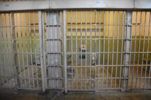 Visitar Alcatraz en San Francisco: una de las celdas