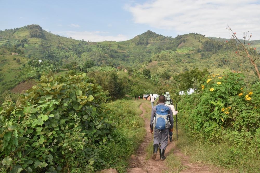 Trekking para ver gorilas en Uganda: empezando la ascensión