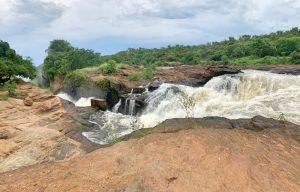 Visitar el Parque Nacional Murchison Falls
