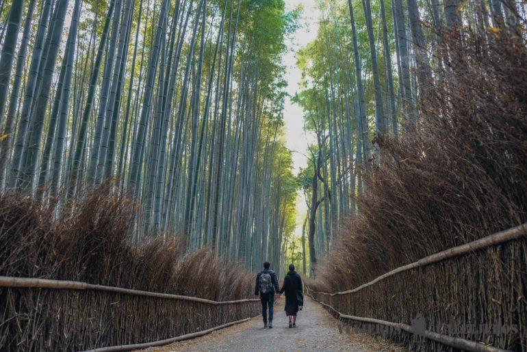 de blog de viajes a empresa