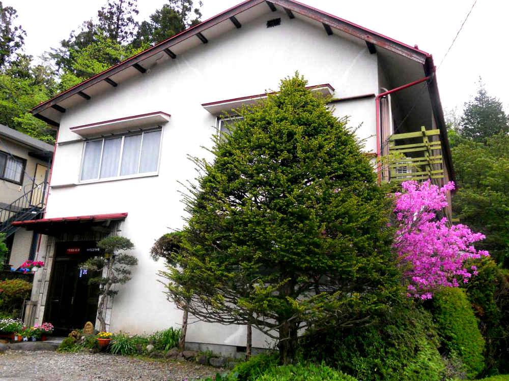 buscar alojamiento en Japón: Casa japonesa de dos plantas, blanca, con un gran árbol en la entrada y un árbol rosa fucsia.