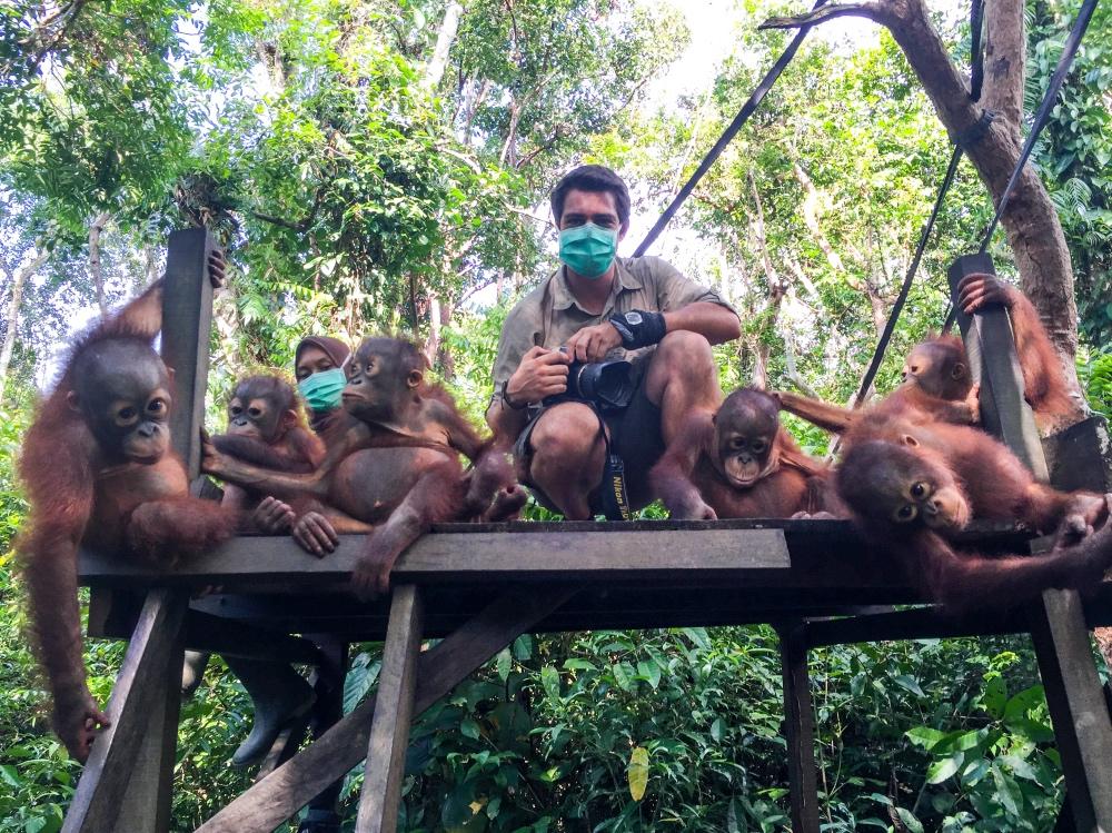 Joan de la Malla rodeado de orangutanes