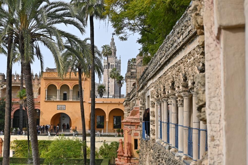 Desde los jardines del Real Alcázar de Sevilla se tienen vistas preciosas de la Giralda