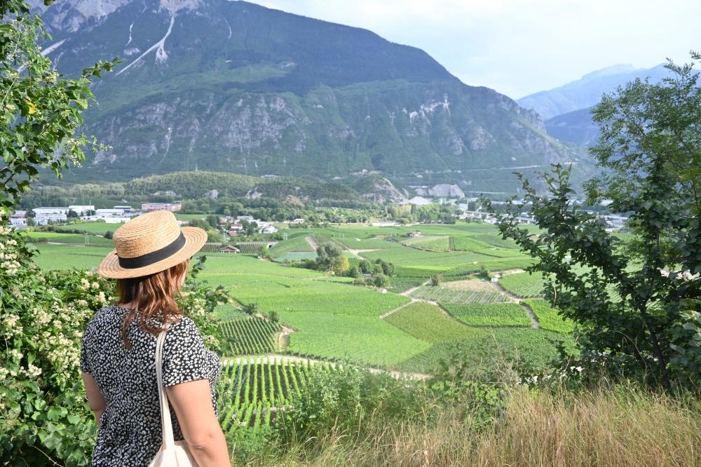 Yo en primer plano, de espaldas, y de fondo los viñedos y montañas.