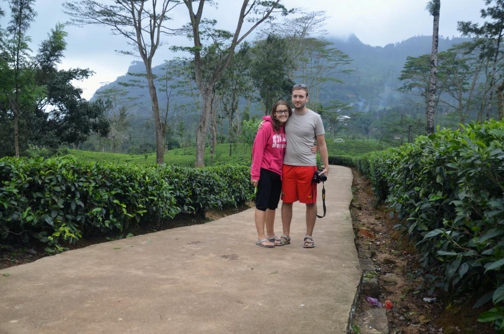 Entre plantaciones de té